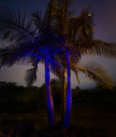 illuminator-laser-lights-by-sparkle-magic-in-1425266818-jpg
